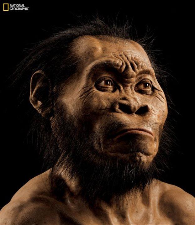 Βρέθηκαν σκελετοί στη Νότιο Αφρική που ανήκουν σε άγνωστο είδος ανθρώπου