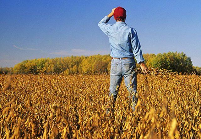 Αυτές είναι οι φορολογικές αλλαγές στους αγρότες