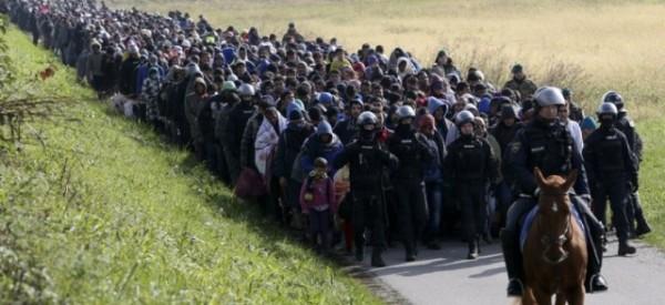 Εκατοντάδες τζιχαντιστές που κάνουν τους καημένους μετανάστες βρέθηκαν στην Νορβηγία