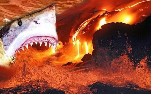 Καρχαρίες που ζούν μέσα σε ηφαίστειο