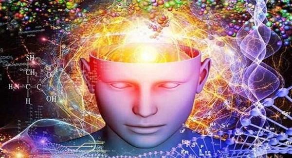 Τα γονίδια της εξυπνάδας και της μόρφωσης