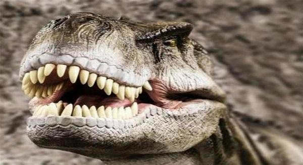 Ο φοβερός και τρομερός Τυραννόσαυρος Ρεξ